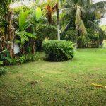 Exodus Retreat / private pool / beach /staff/ 4 bedrooms+bath/ & bud